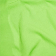 Rental store for UMBRELLA LINEN - LIME in Houston TX