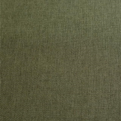 Rental store for UMBRELLA LINEN - WESTERN APPLE GREEN in Houston TX