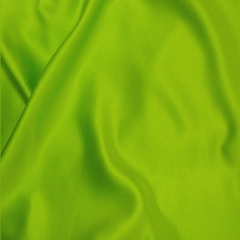 Rental store for PILLOW COVER - GREEN APPLE SATIN in Houston TX